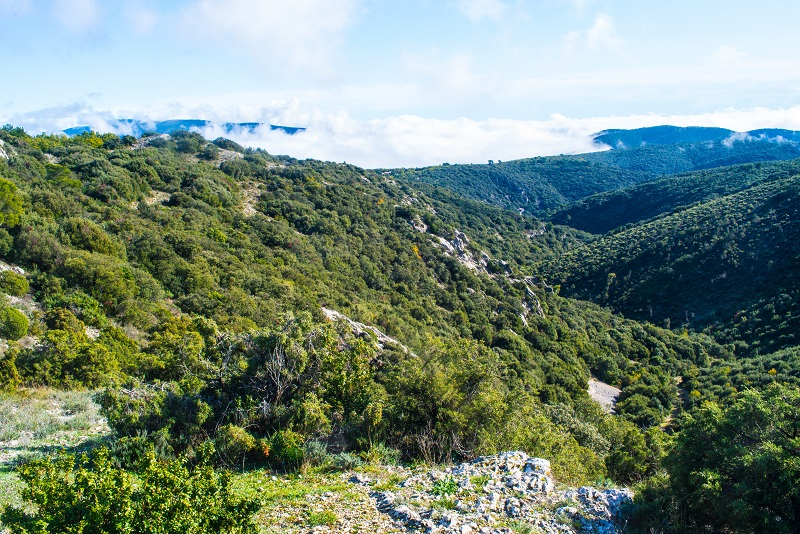 «Сердце» Прованса: полное руководство по долине Люберон